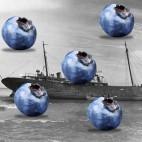 blueberry-boat-social-sqsqsq