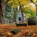 cemetery-forest-hills-sq