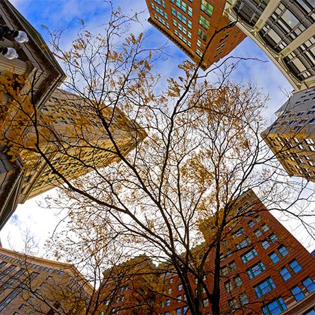 financial district 1-sq