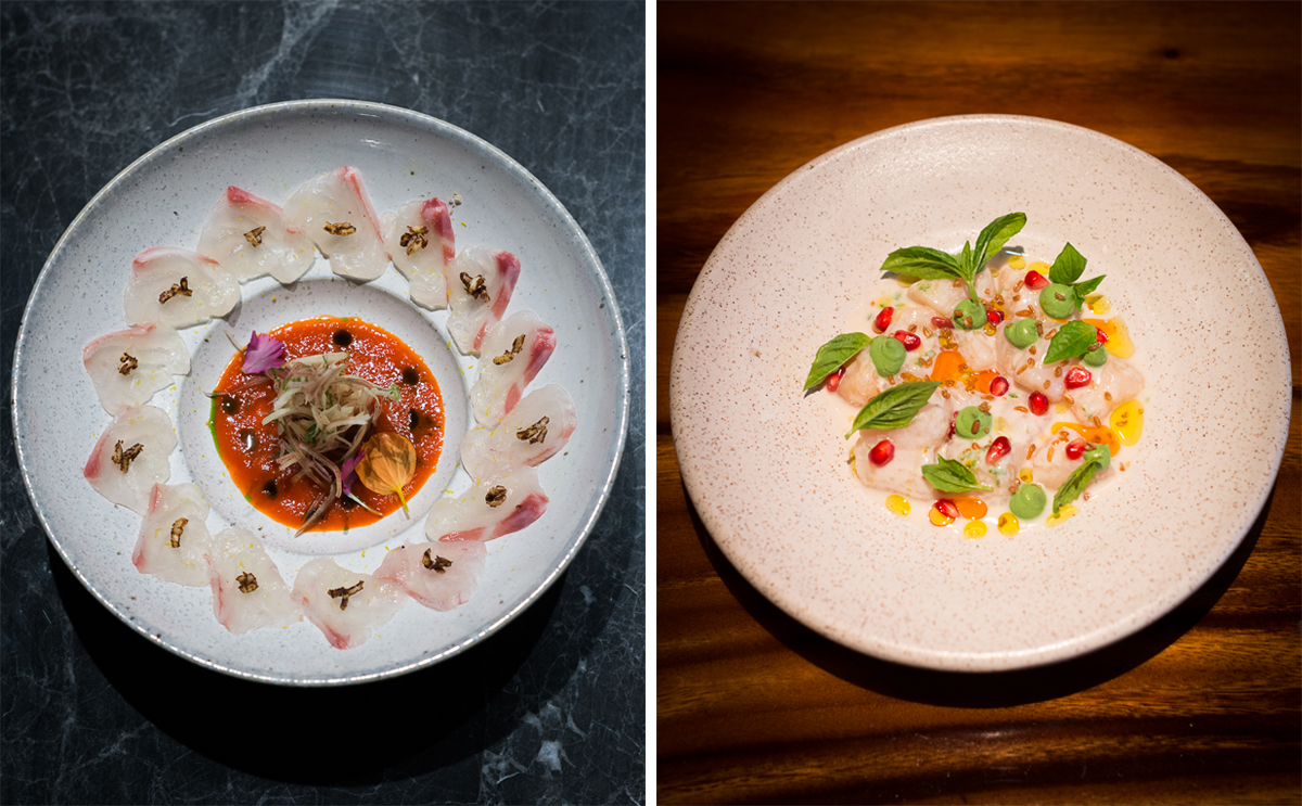 Madai Usuzukuri (cured sea bream) (left) and Nantucket Bay scallop ceviche
