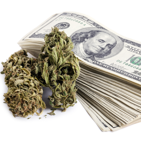 Marijuana buds and a large stack of 100 US dollar money notes isolated on white background.