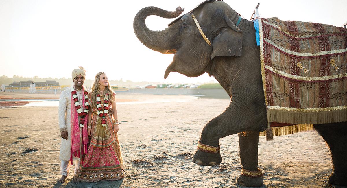 Katie ONeal Vivek Reddy wedding sm