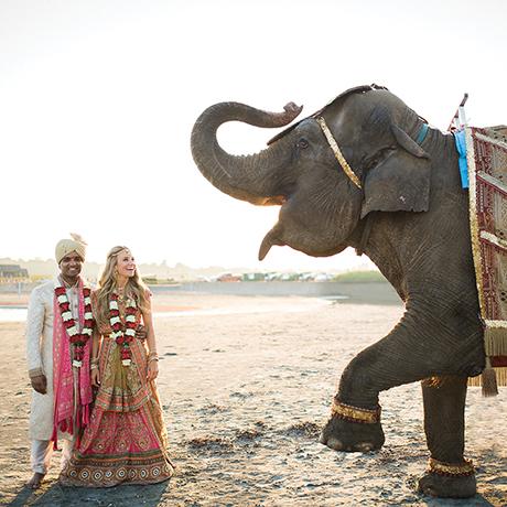Katie ONeal Vivek Reddy wedding sq