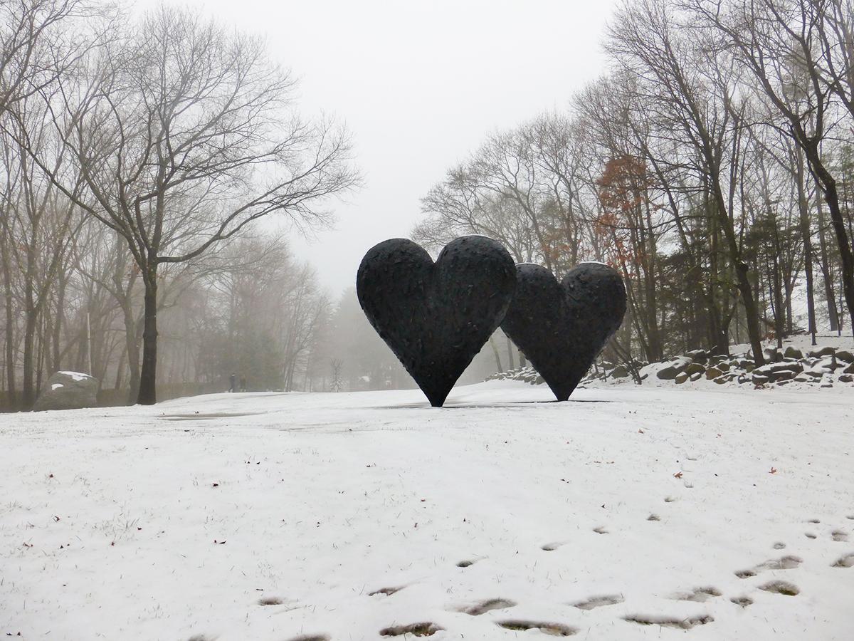 winter day trips ma