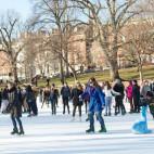ice skating 460