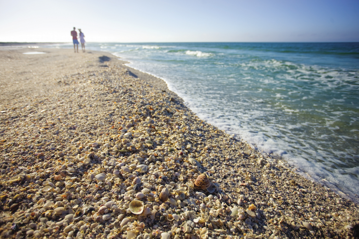 sanibel captiva islands florida 1