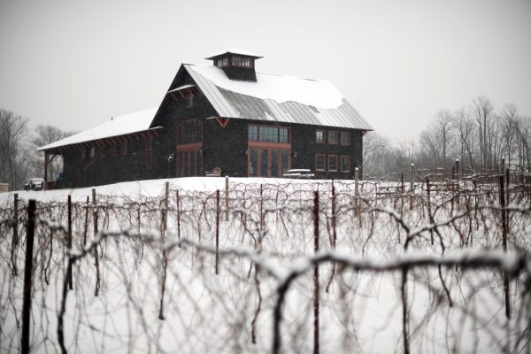 Shelburne_Vineyard_Winter