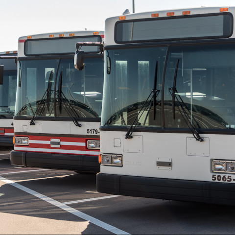 Row of Parked Buses