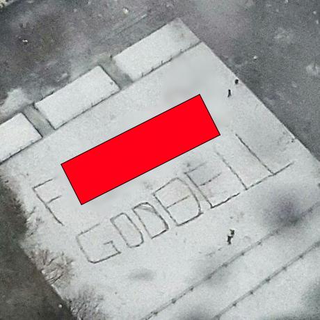 goodell snow sq blur