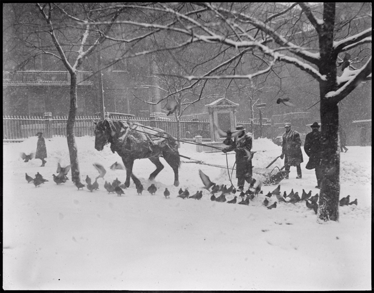 These Old Photos Show Boston S Blizzards Of Yesteryear