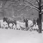 old-photos-boston-blizzards-SQ