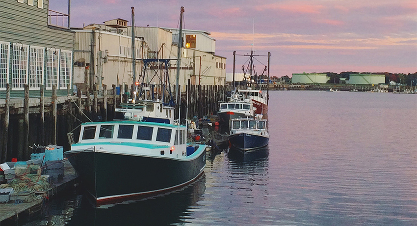 portland-maine-harbor