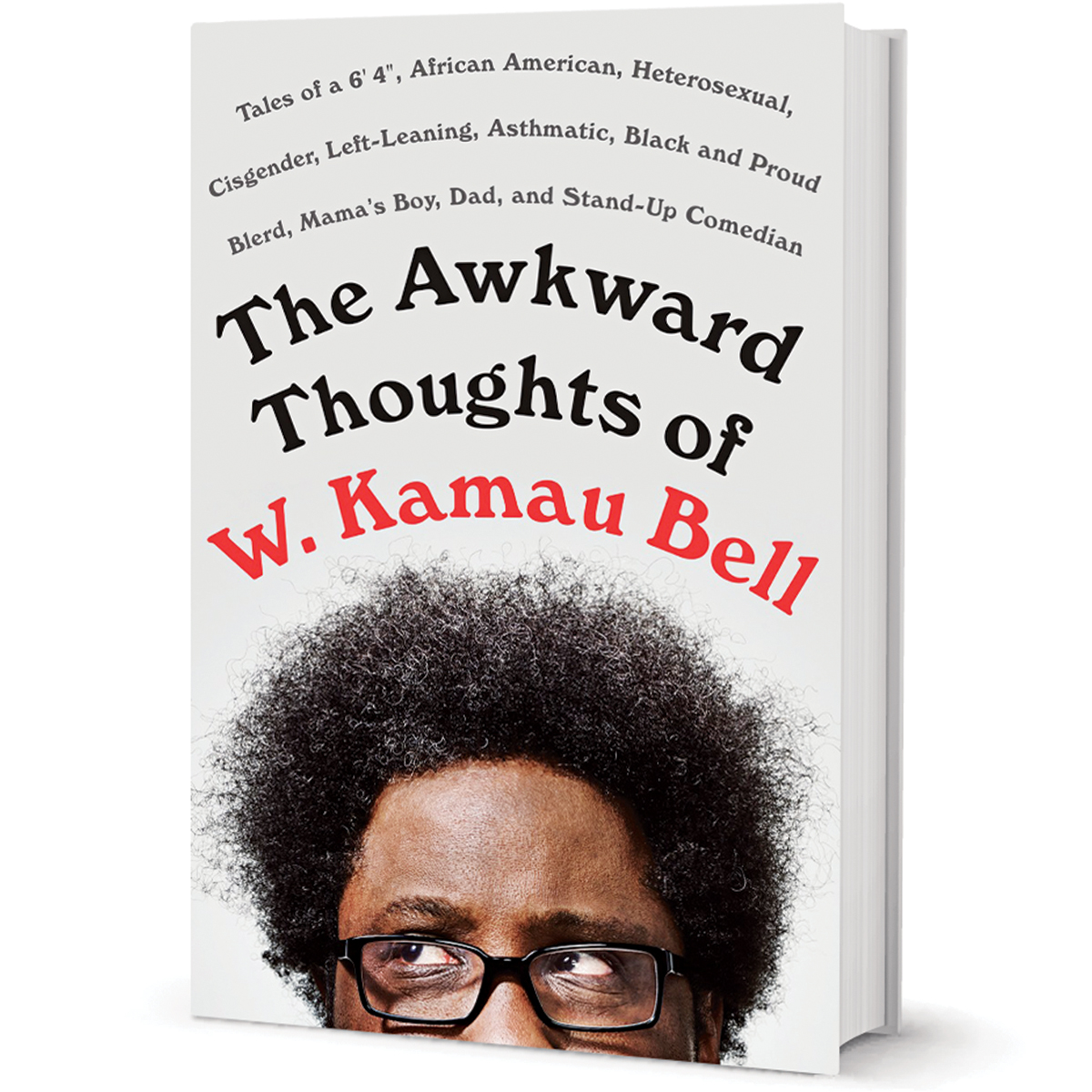 w kamau bell book