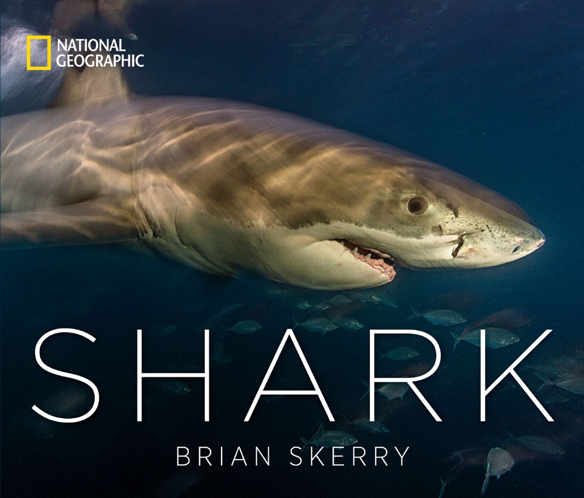 Brian Skerry shark book photography