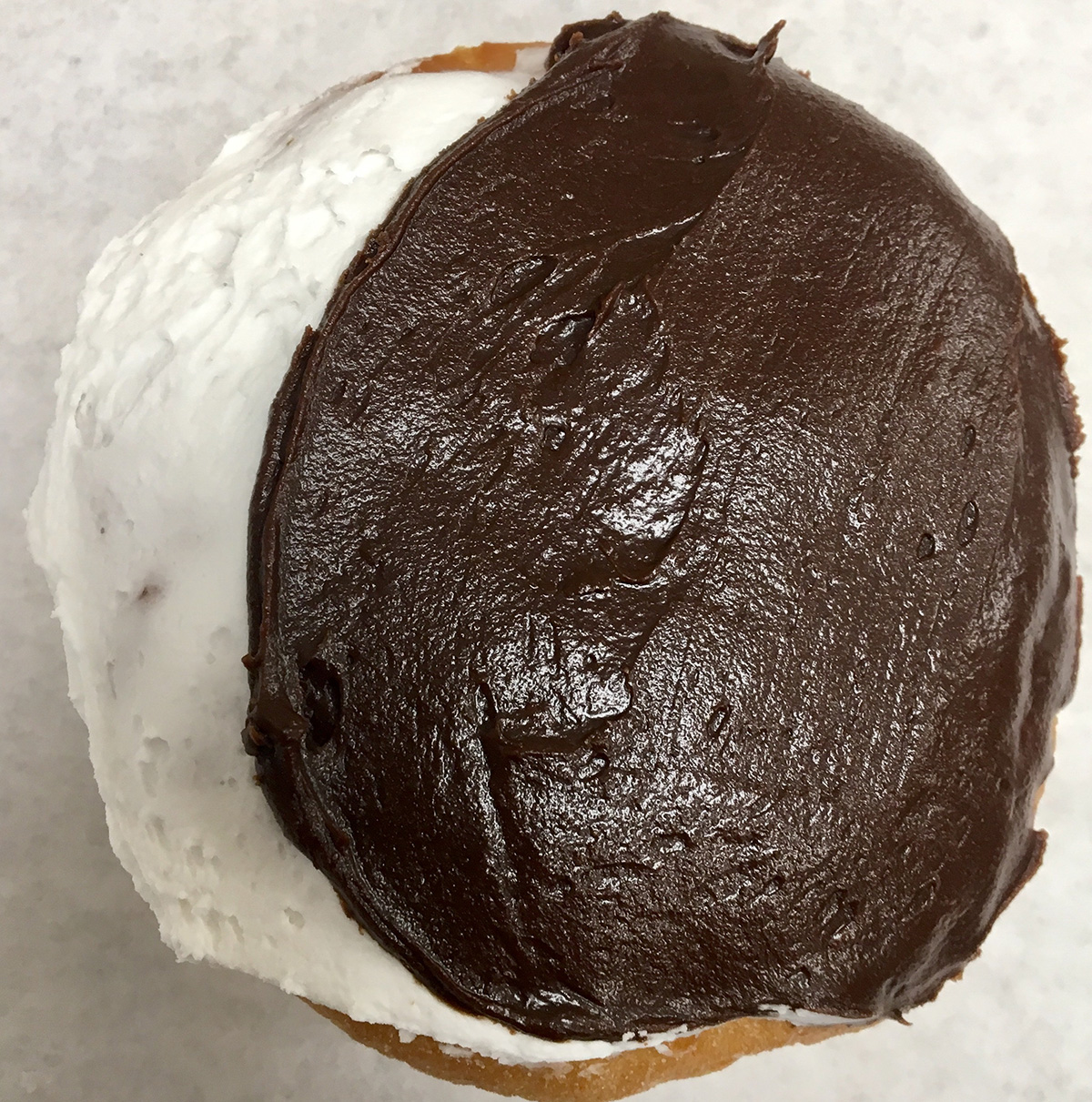 Kane's solar eclipse Boston cream doughnut