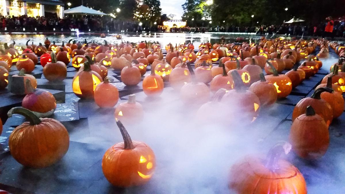 Jack-o-lanterns float on the Frog Pond