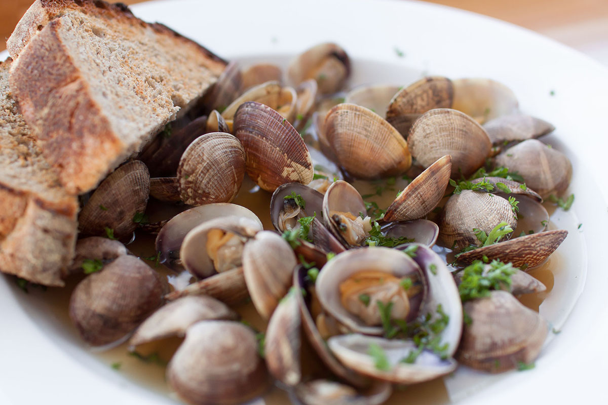 MANILA CLAMS with FAT TIRE ALE BROTH. at NOCA Provisions