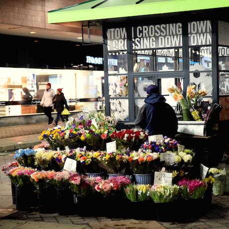 Flowers in Downtown Crossing, Boston