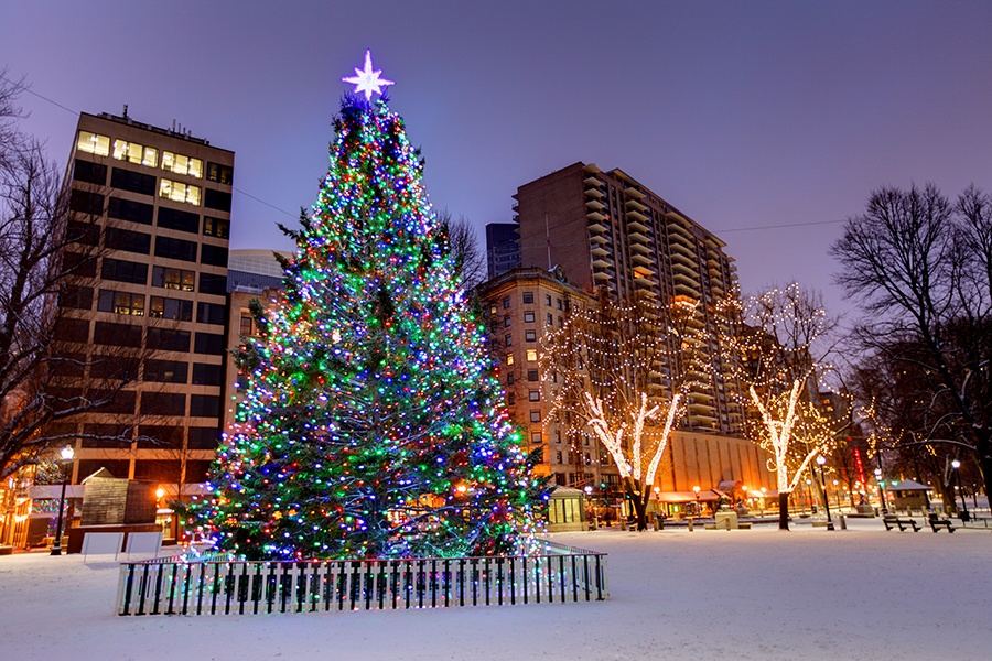 Boston Christmas Tree Lighting
