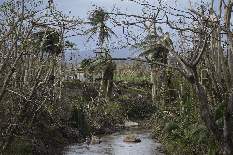 A couple bathes in a river beneath strewn palm trees in Puerto Rico