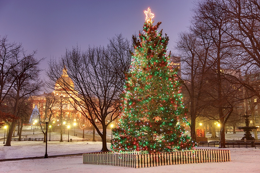 Why Does Boston Still Accept a Christmas Tree from Nova Scotia Every Year?