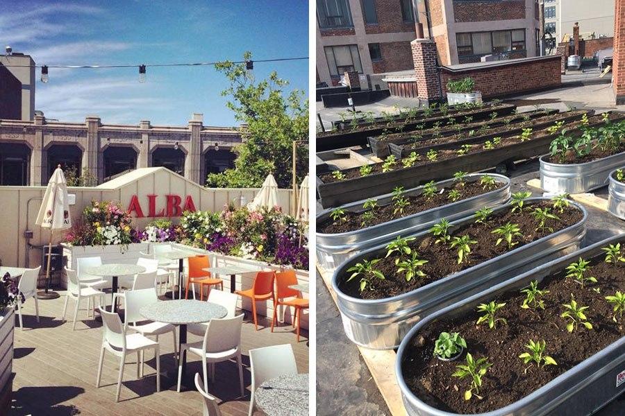 Quincy Restaurant Alba Is Expanding Its Popular Roof Deck