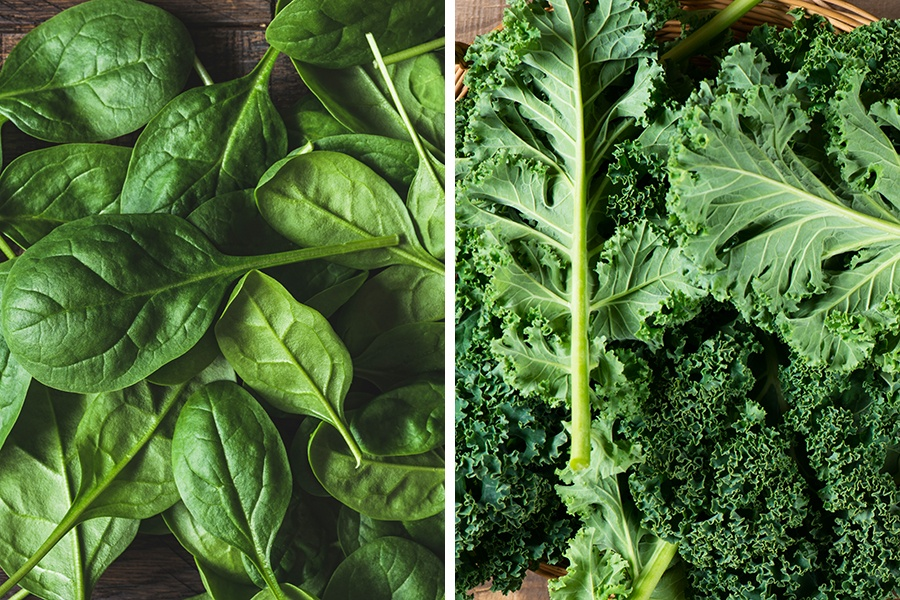 Which Leafy Green Is More Nutritious