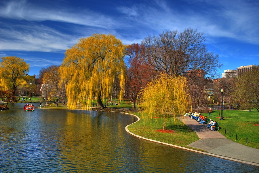 Boston Ranks among the Nation's Lowest in Green Space per Person