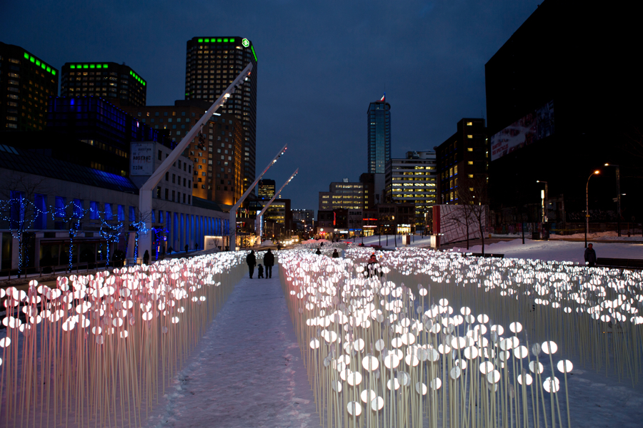 A Glowing, Swaying Field of 28,000 Lights Is Sprouting in the Seaport