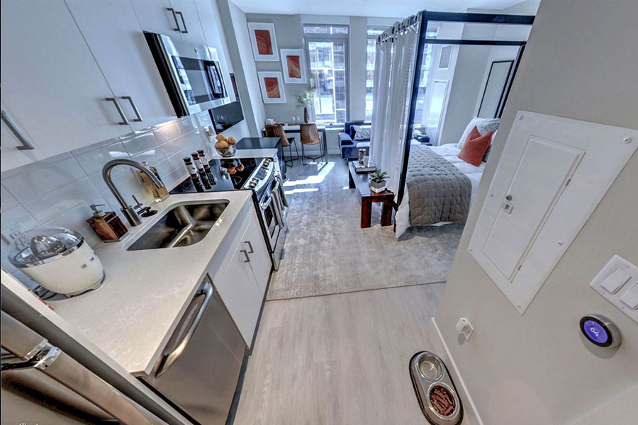 Five Nice Pet Friendly Apartments For Rent In Boston
